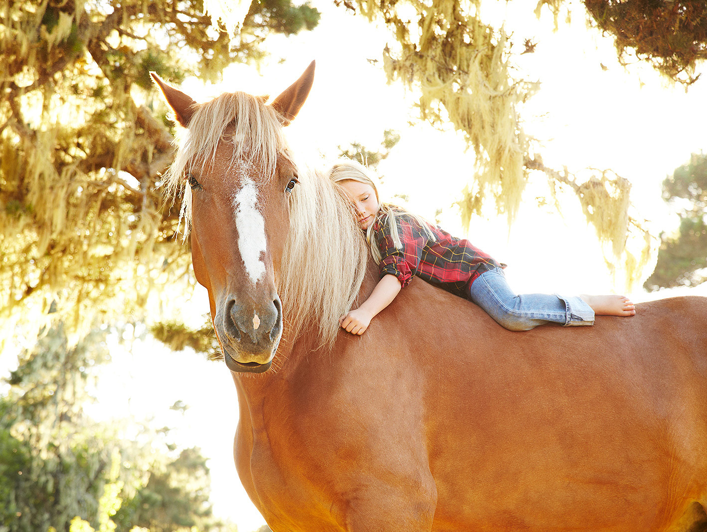 Young girl on horseback  | Dovis Bird Agency Photography