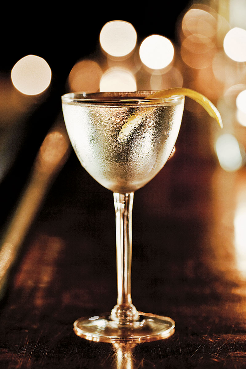 Martini with a Twist of Lemon  | Dovis Bird Agency Photography