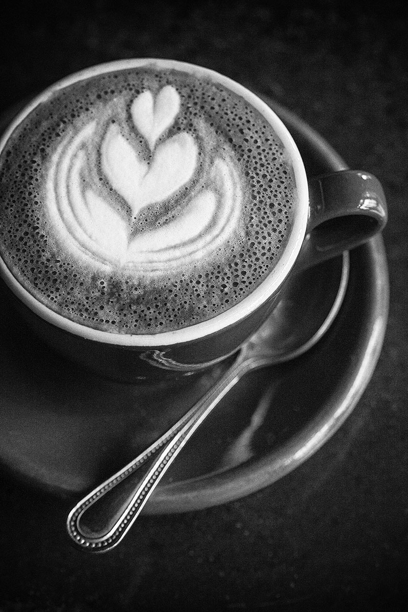 Black + White Photograph of Cappuccino | Dovis Bird Agency Photography
