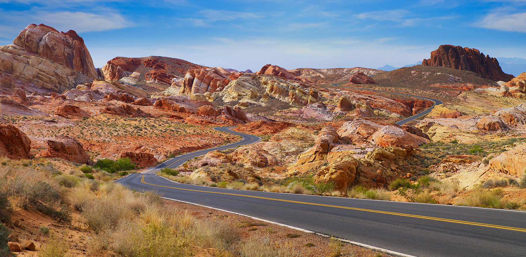 Winding desert road in California | Dovis Bird Agency Reps