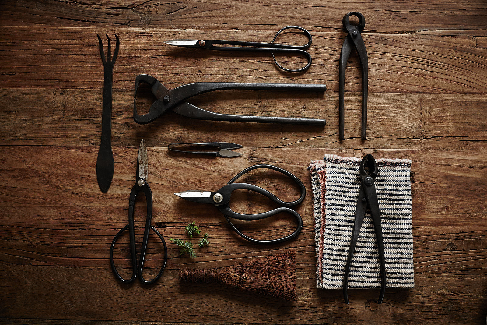Bonsai Scissors + Tools  | Dovis Bird Agency Photography