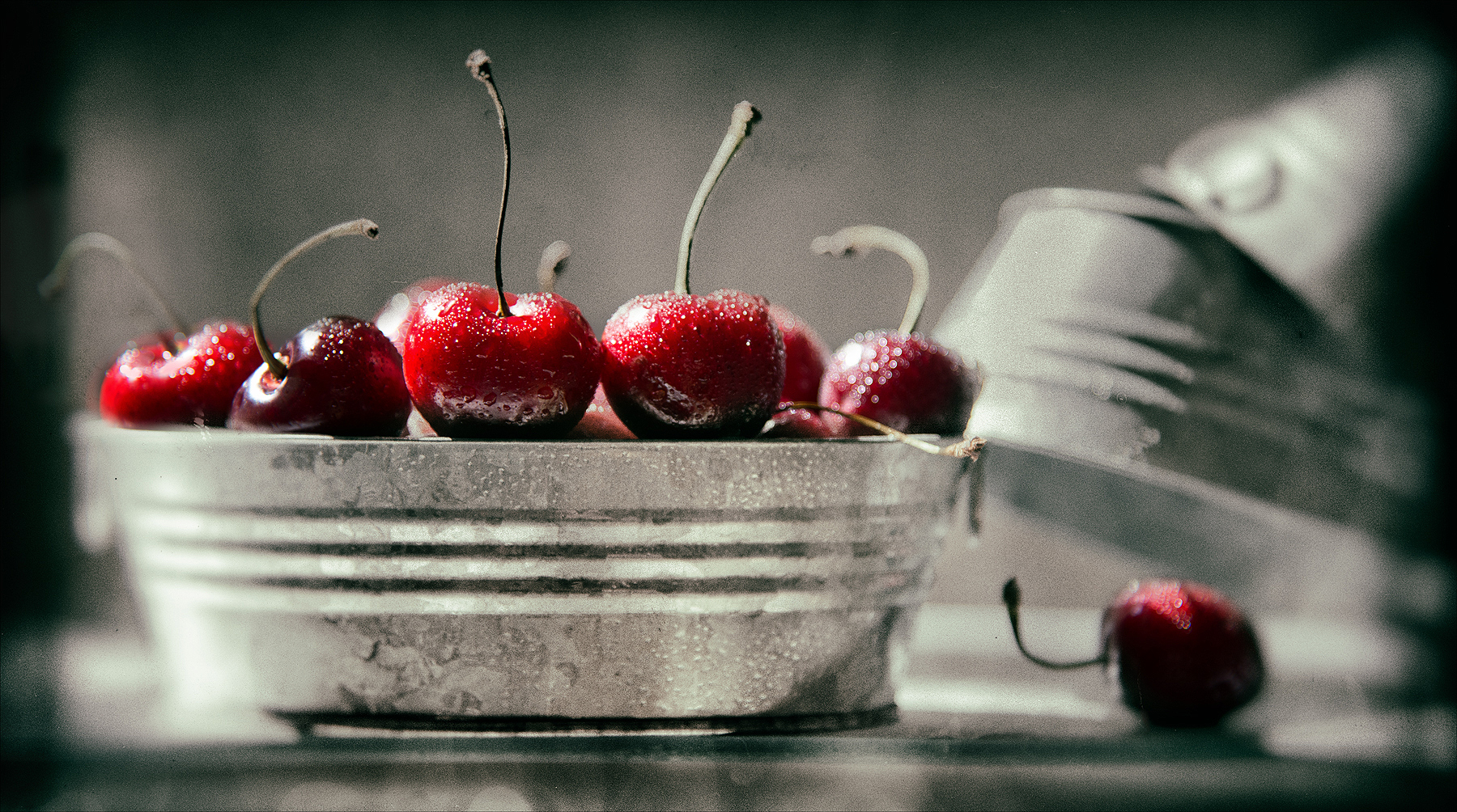 Cherries still life | Dovis Bird Agency Photography
