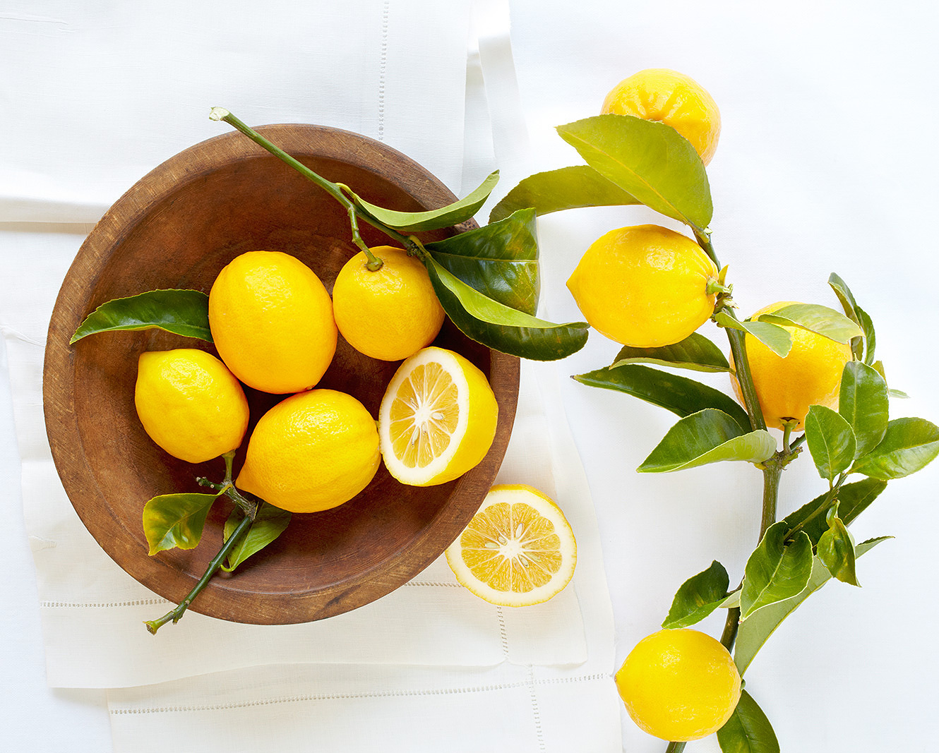 Bowl of Lemons  | Dovis Bird Agency Photography