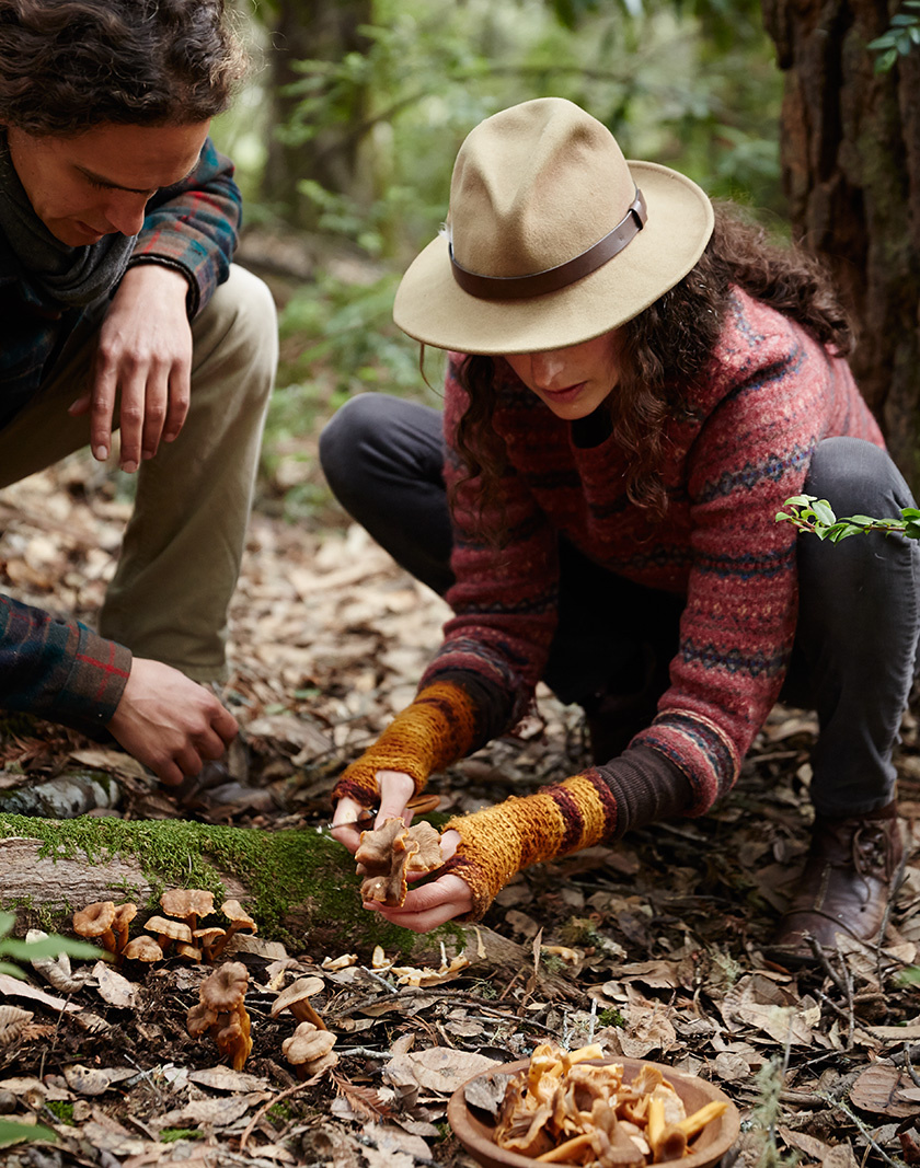 Couple Foraging for Wild Mushrooms  | Dovis Bird Agency Photography