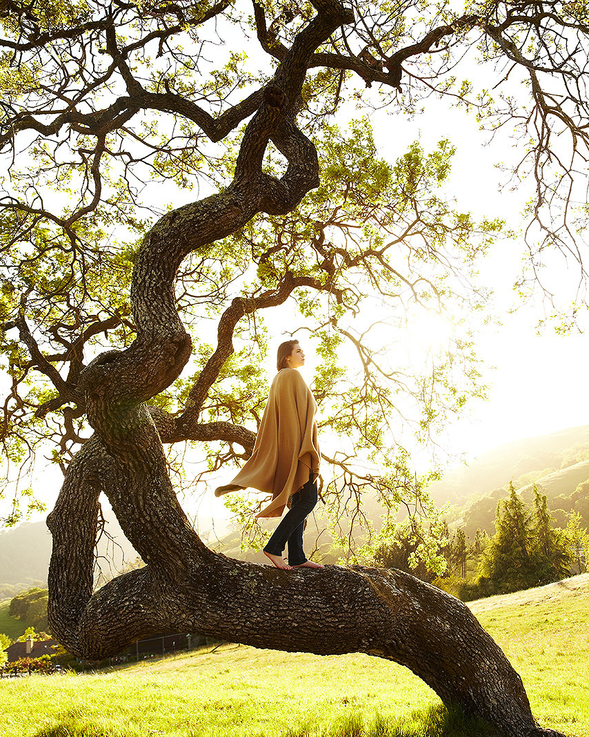 Woman climbing tree  | Dovis Bird Agency Photography