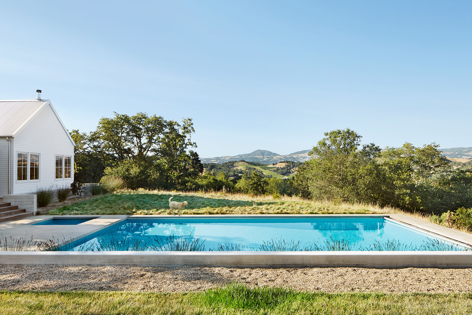 Swimming pool + House  | Dovis Bird Agency Photography
