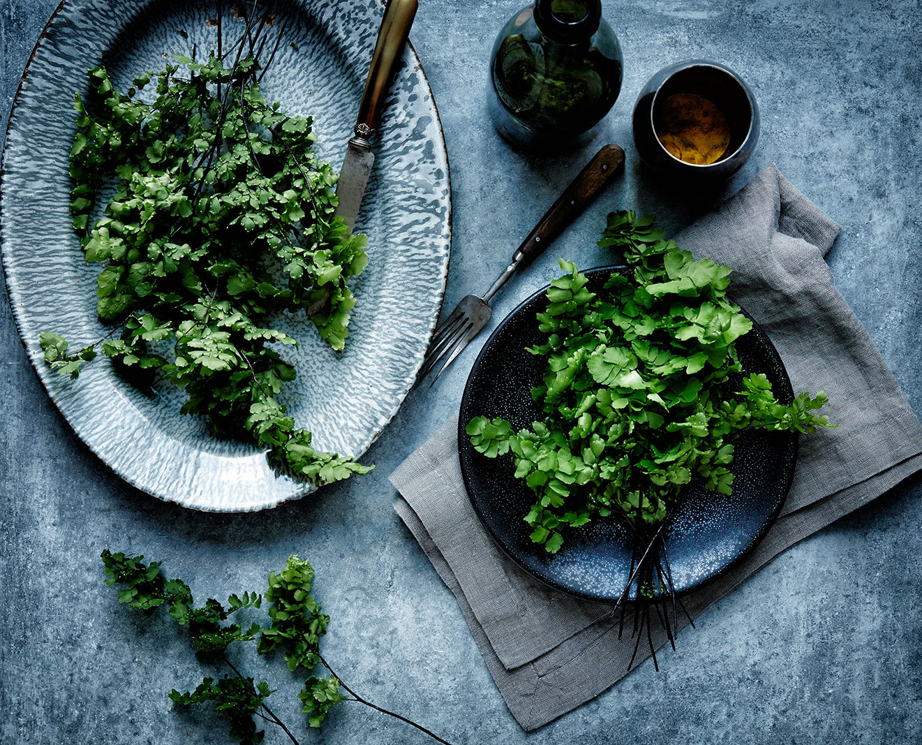 Fresh Garden Salad Greens  | Dovis Bird Agency Photography